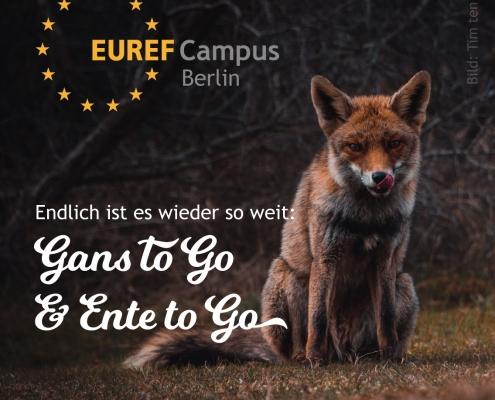 Fuchs ©EUREF AG